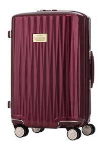 SBL PLUTUS SPINNER 55/20  hi-res | Samsonite